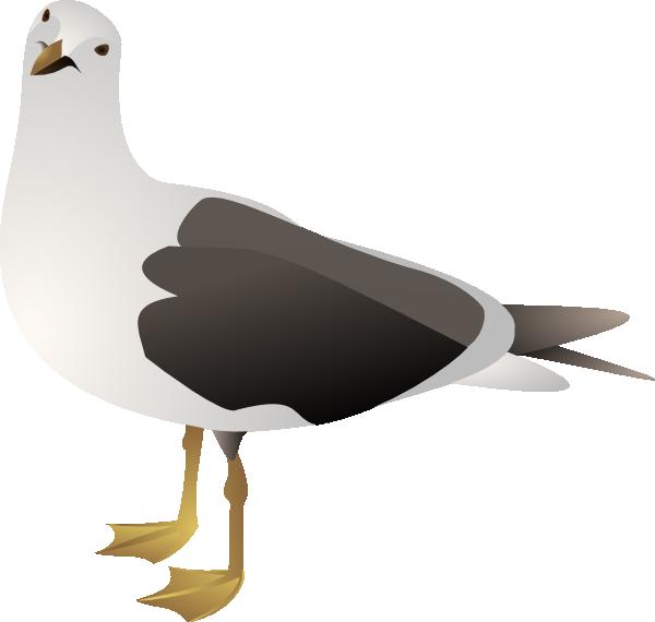 free vector Gull clip art