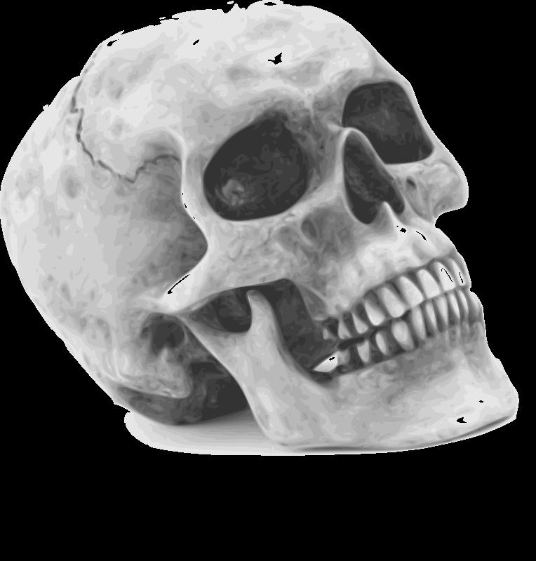 free vector Halloween 004