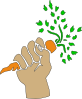free vector Hand Holding Carrot clip art