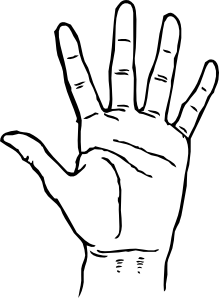 free vector Hand Palm Facing Out clip art