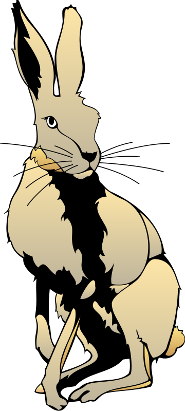 free vector Hare