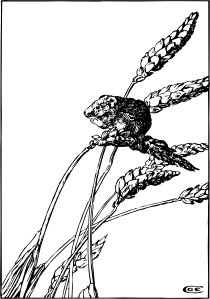 free vector Harvest Mouse clip art