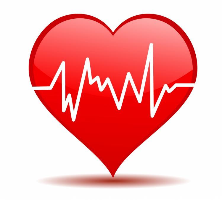 free vector Heartbeat