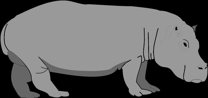 free vector Hippopotamus 2