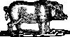 free vector Hog clip art