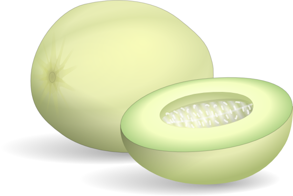 free vector Honeydew Melon clip art