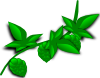free vector Hops Plant clip art