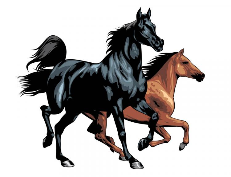 free vector Horse 03 vector