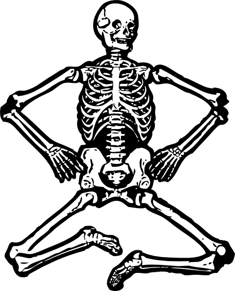 Human Skeleton Clipart Images & Pictures - Becuo