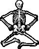 free vector Human Skeleton clip art