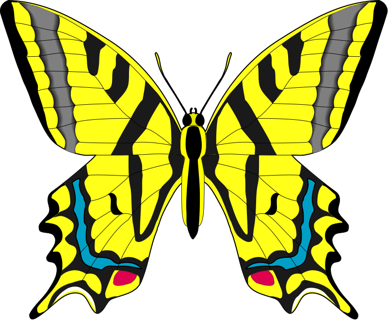 free vector Insect 01