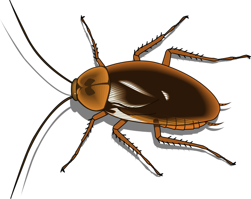 free vector Insect 25