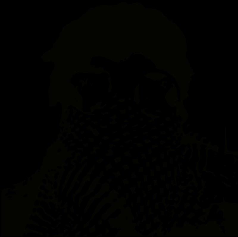 free vector Intifado