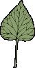 free vector Ivy Leaf clip art