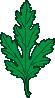 free vector Ivy Leaf Green Chrysanthemum clip art