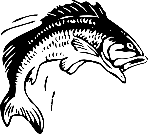 Fish Vector Images amp Pictures Becuo