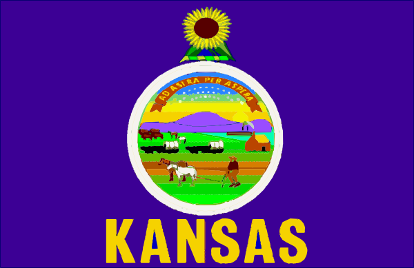 free vector Kansasflag clip art
