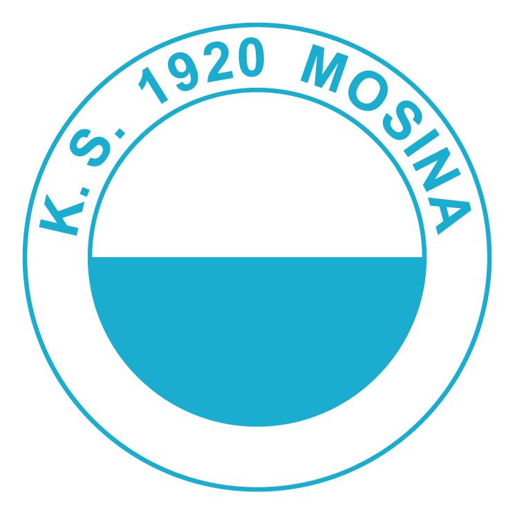 free vector Ks 1920 mosina