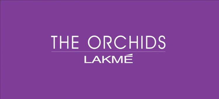 free vector Lakme logo
