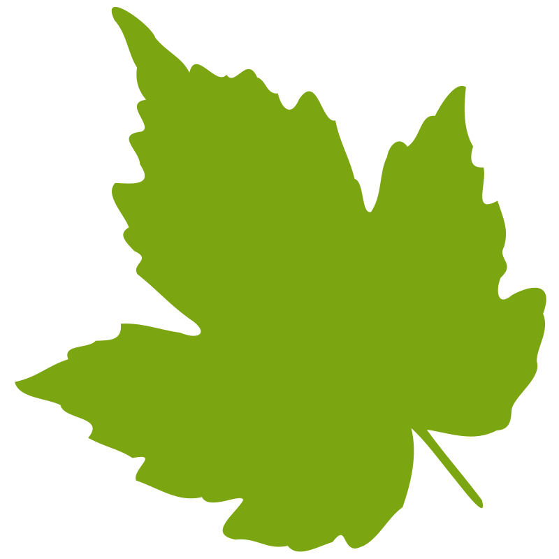 leaf 04 free vector 4vector rh 4vector com vector leaves png vector leaves border