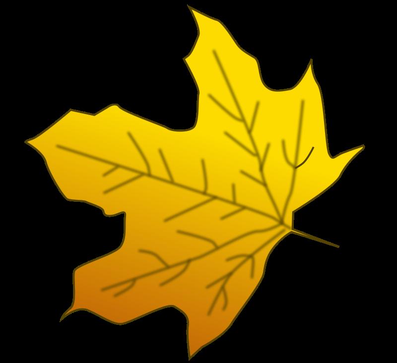 free vector Leaf 3