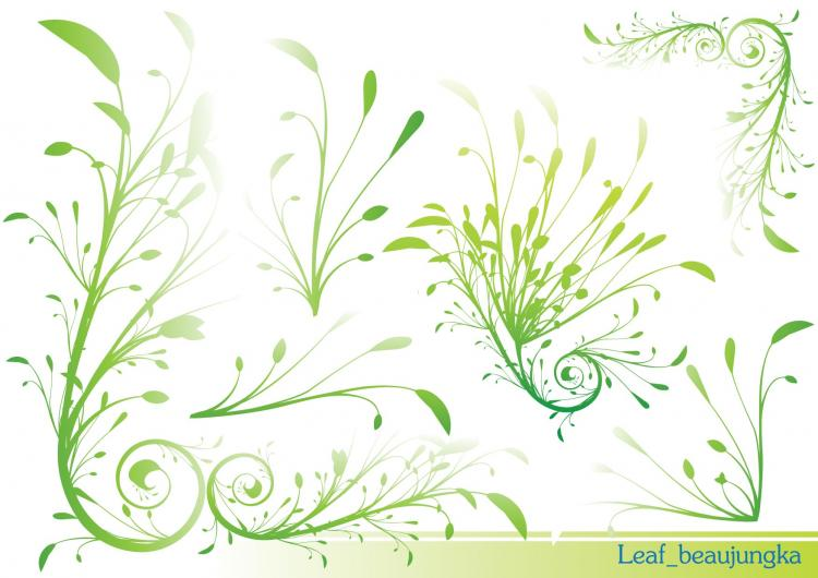 free vector Leaf Beaujungka