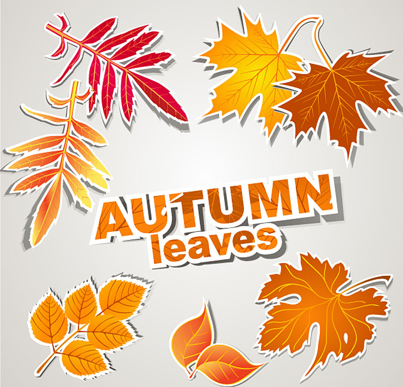 free vector Leaf label 01 vector