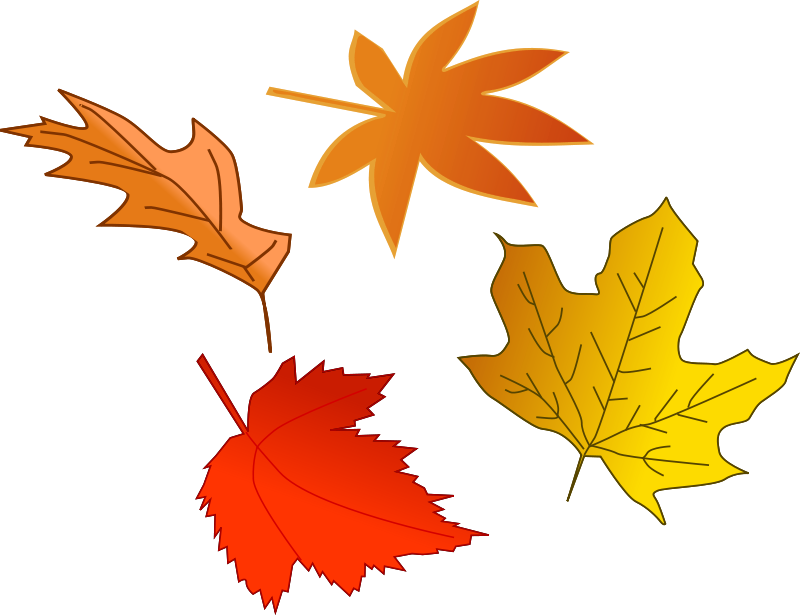 free vector Leafs