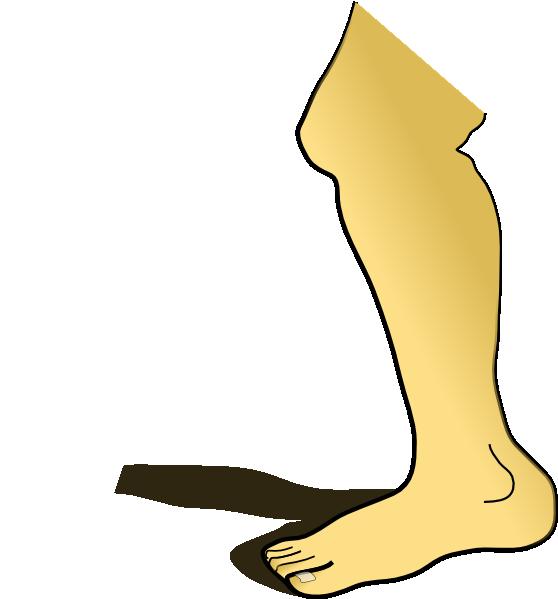 free vector Leg clip art