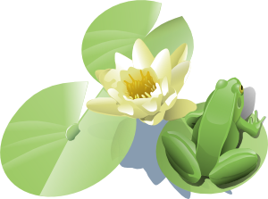 free vector Leland Mcinnes Frog On A Lily Pad clip art