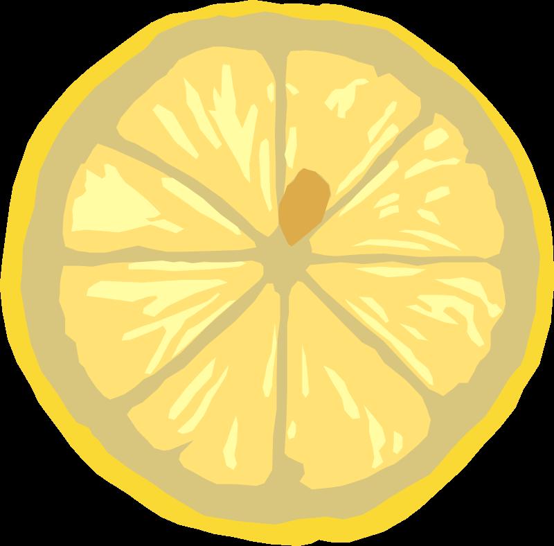 free vector Lemon slice