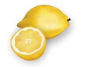 free vector Lemon vector