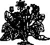 free vector Lesser Celandine clip art