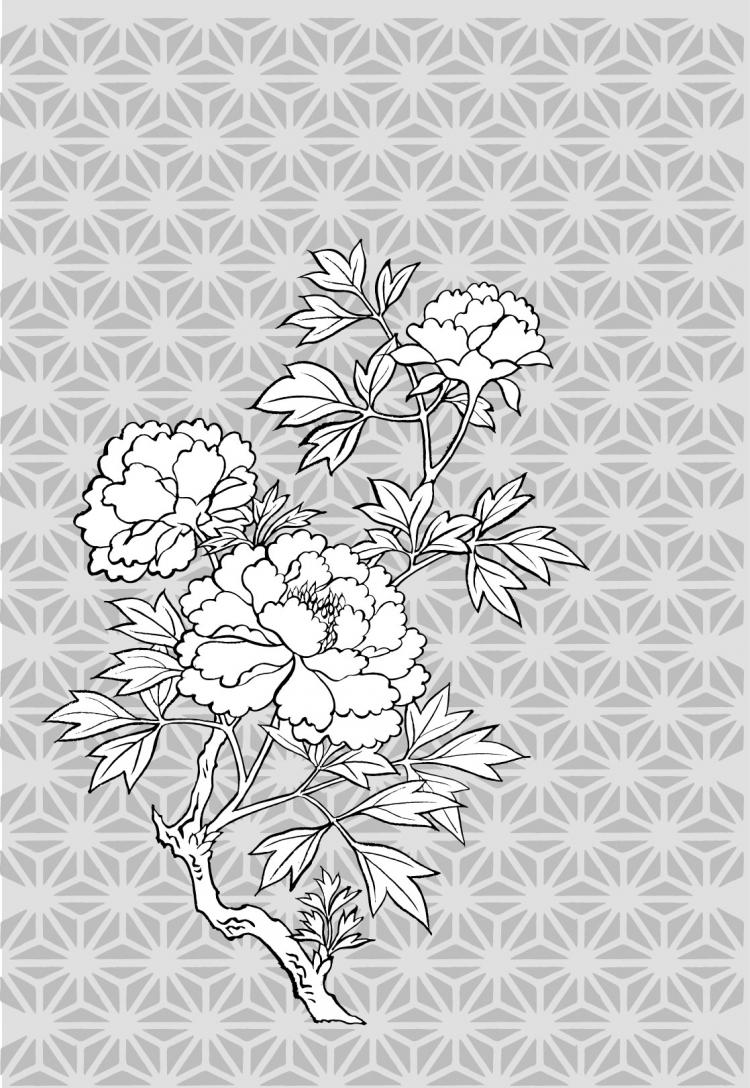 free vector Line drawing of flowers -11
