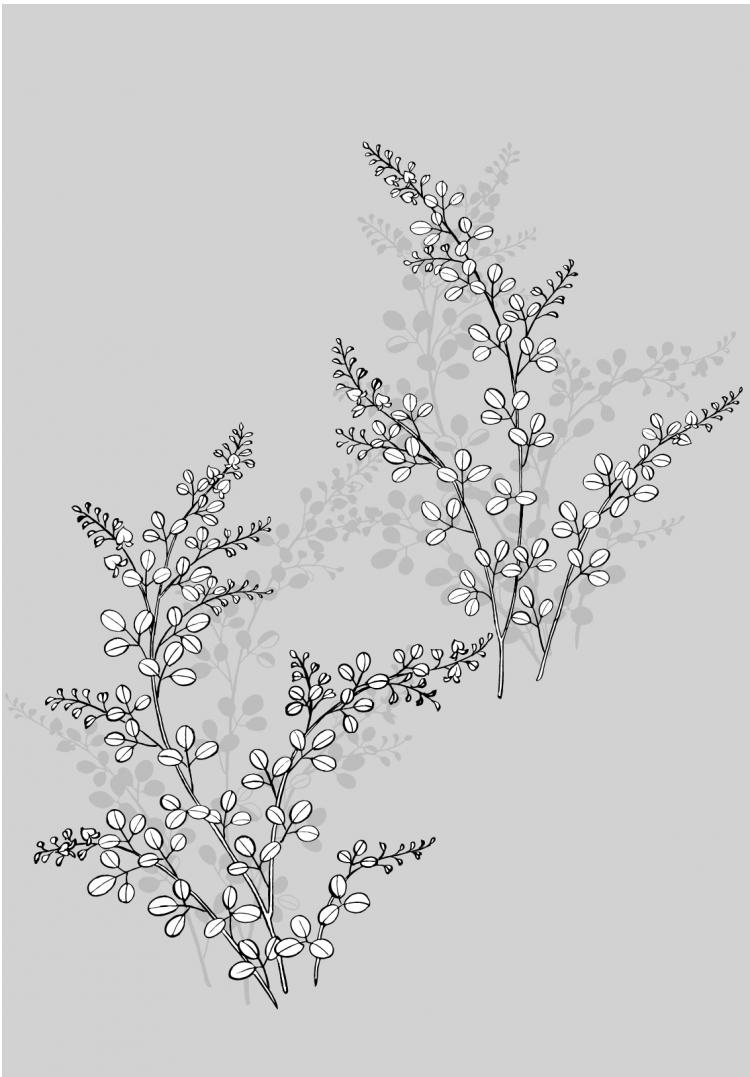 free vector Line drawing of flowers -17