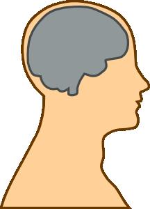 free vector Medical Diagram Of Brain clip art