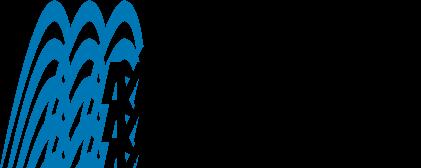 free vector MetaCreations logo
