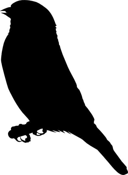 free vector Michowwtru Gold Finch clip art