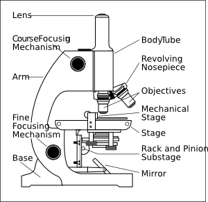 free vector Microscope With Labels clip art