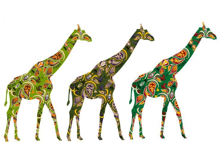 minority exquisite decorative painting 04 vector free vector - Decorative Painting