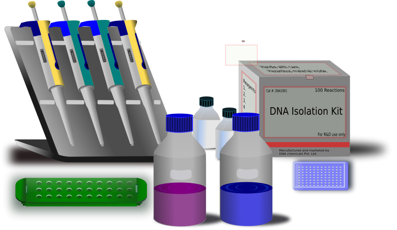What job can you get with molecular biology?