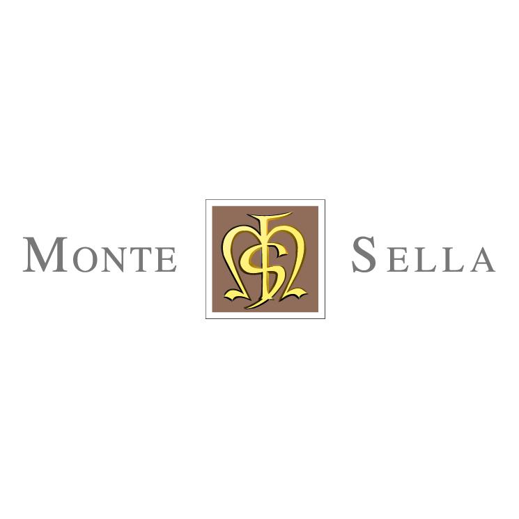free vector Monte sella
