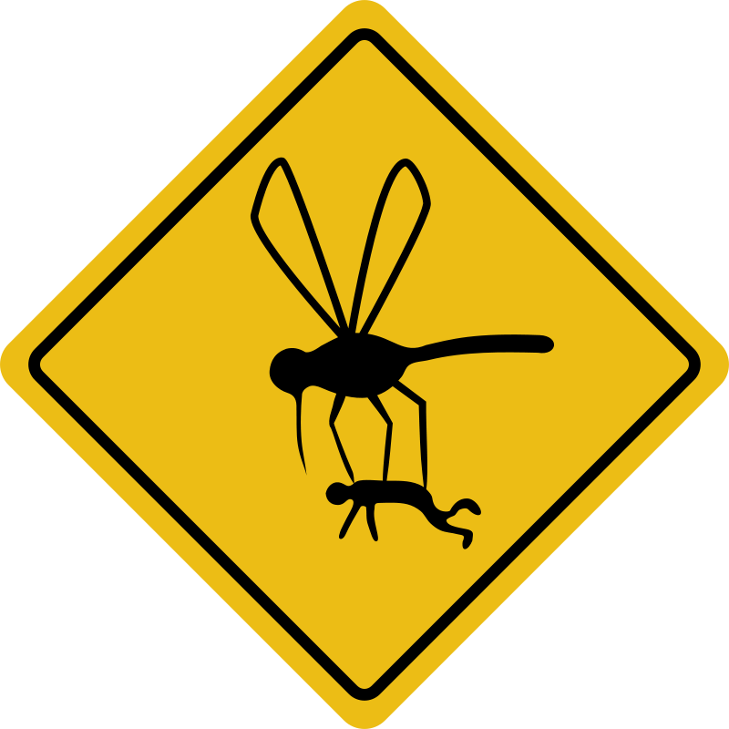 free vector Mosquito hazard