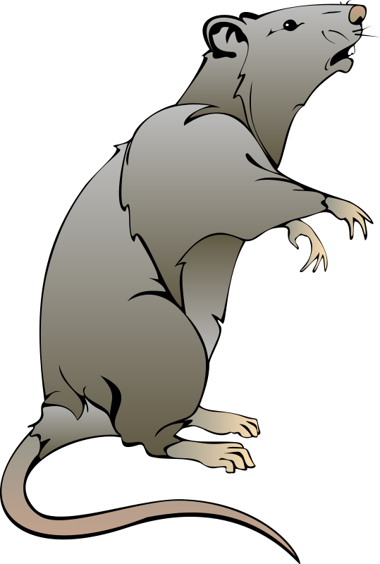 free vector Mouse 2