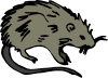 free vector Mouse Rat Rodent clip art