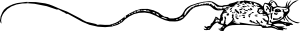 free vector Mouse With A Very Long Tail clip art