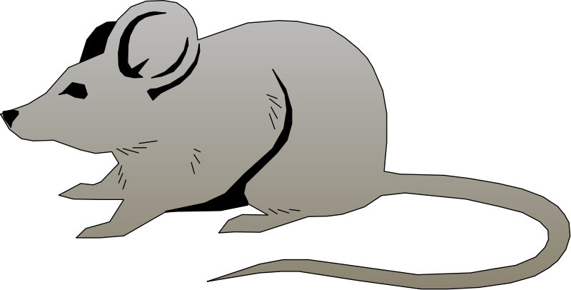 free vector Mouse