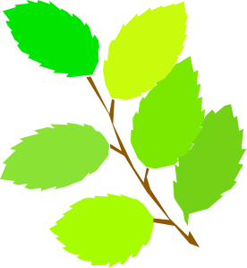 free vector New Leaves Spring clip art