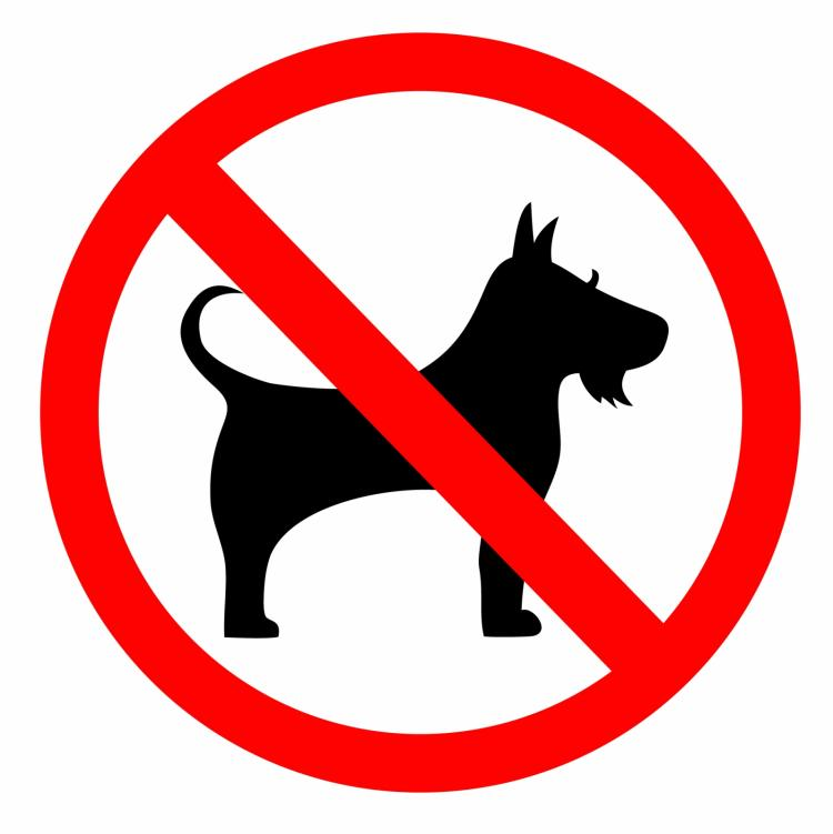 No dog sign Free Vector / 4Vector