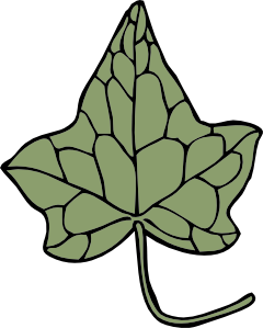 free vector Oak Ivy Leaf clip art